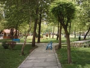 پروژه پلاک کوبی درختان منطقه 4 تهران - شرکت سورنا پردازش