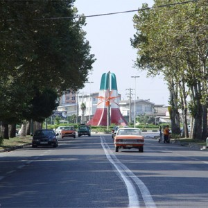 پروژه پلاک کوبی درختان منطقه 7 تهران - شرکت سورنا پردازش