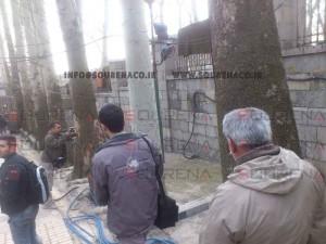 پروژه پلاک کوبی درختان و شناسنامه دار کردن درختان کاخ سعد آباد تهران