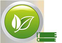 Logo_ITREE_Online